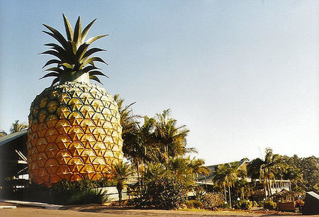 Big Pineappele, Australie